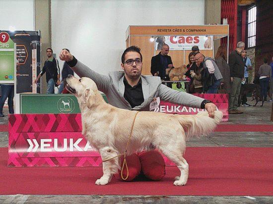 Yuki Porto 2016